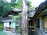 06-06-25_09-50_1.jpg