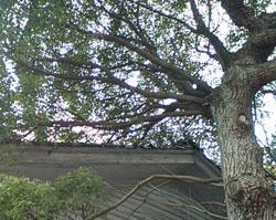 嶋田工建は石川県金沢市の工務店です
